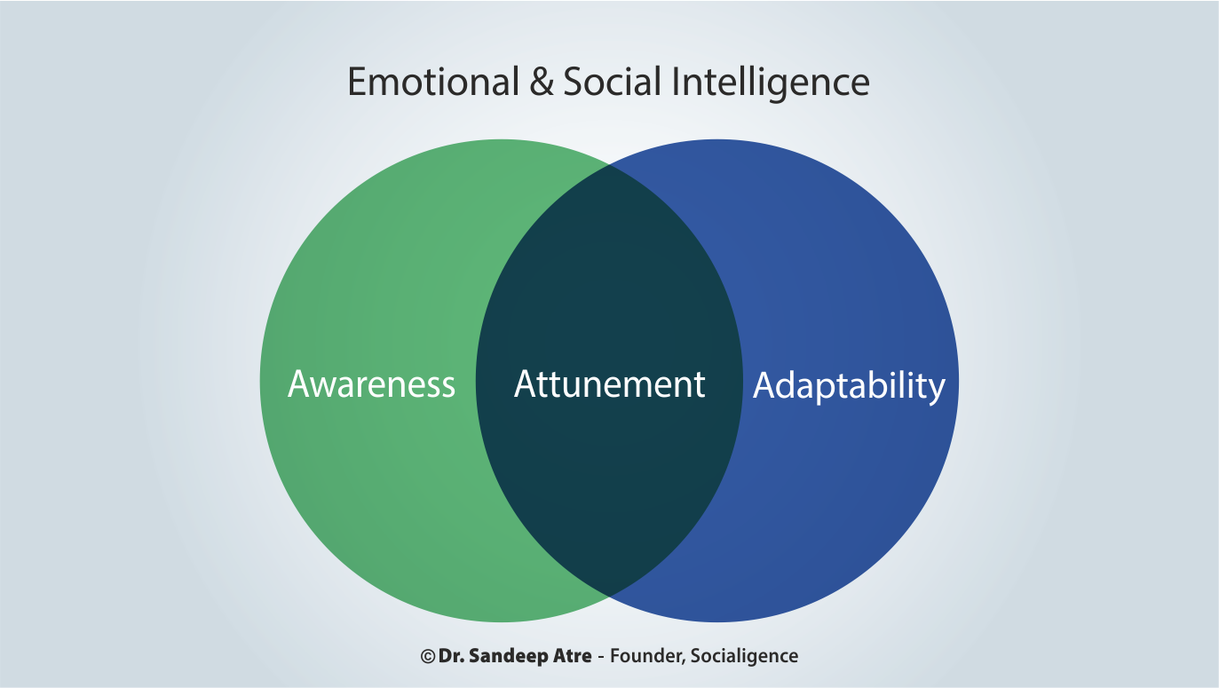 Visual of 2.a's Q1 - What is Emotional & Social Intelligence